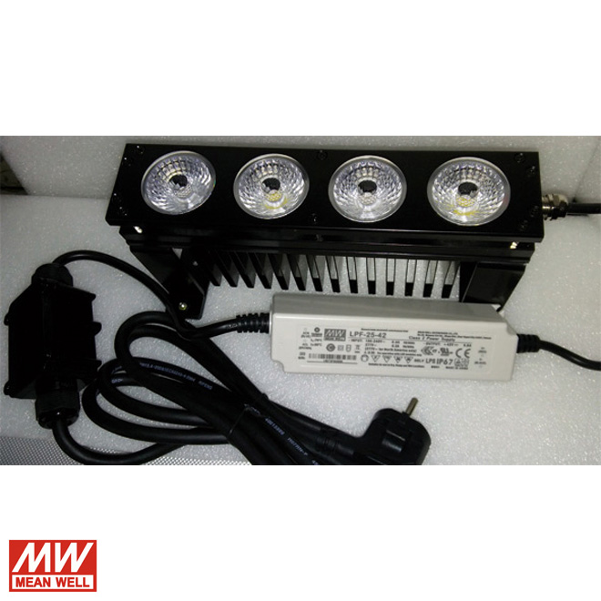 20W Aqualight
