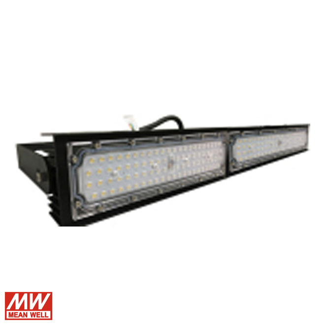 100W Floodlight Linear